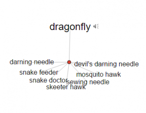 "Visual Thesaurus definitions for ""dragonfly"""